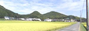 山全体-2